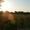 Продам земельный участок Винница-с. Лавровка, срочно! - Изображение #5, Объявление #326333