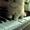 Персидский котенок Агнешка -классная малышка! #1288762