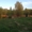 Земельный участок 35 сот. ОТ ХОЗЯИНА - Изображение #1, Объявление #1458636