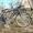 Велосипеди з Німеччини #1549667