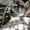 Захват лесной HULTDINS GLC 50 - Изображение #2, Объявление #1645344