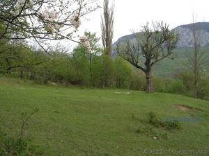 Продам земельный участок 60 соток 15км от Винницы - Изображение #1, Объявление #685075