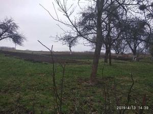 Продается участок 30 соток в с. Щитки, Винницкая область - Изображение #2, Объявление #1654954