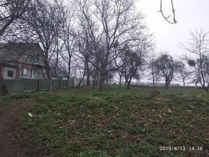 Продается участок 30 соток в с. Щитки, Винницкая область - Изображение #8, Объявление #1654954