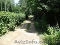 Дом Тывров Винницкая область - Изображение #2, Объявление #967549