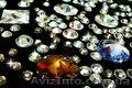 Сваровски кристаллы. Оптом и в розницу