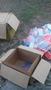 Игрушка 'Полет Орла' - Изображение #2, Объявление #1573189