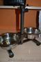 продам собаку мопс щенок порода прививки торг черный документы недорого  - Изображение #4, Объявление #1602947